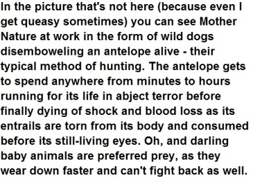 Wild dogs text