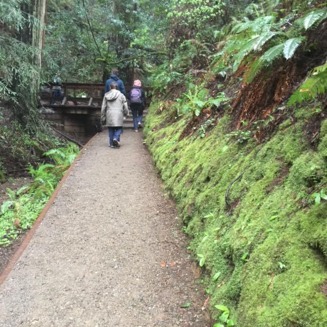 On the Beaten Path 2