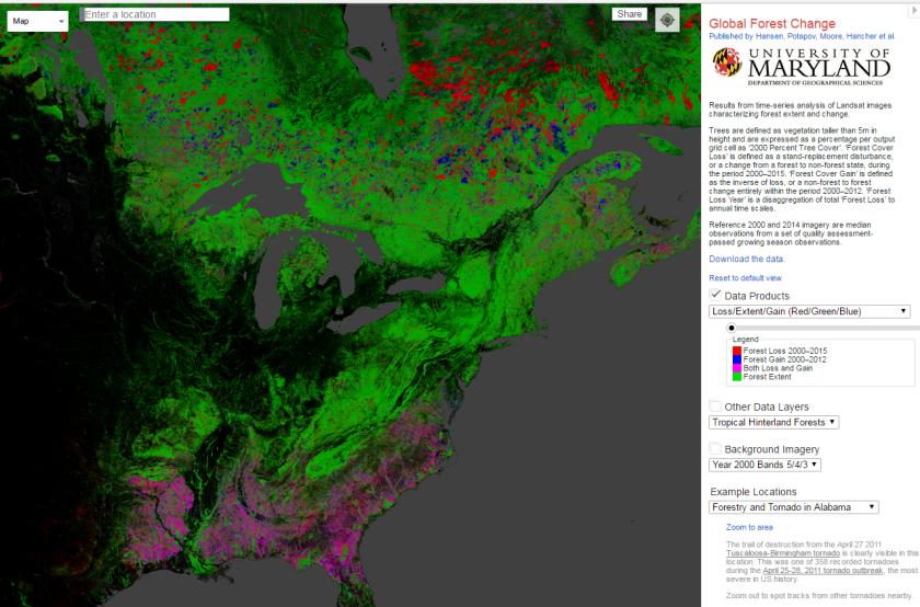 US forestation